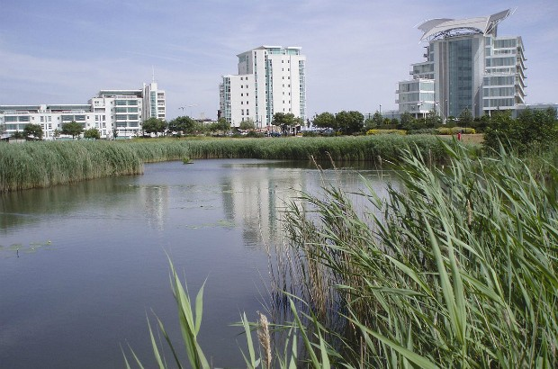 Cardiff Bay Wetlands Reserve showing St Davids Hotel (Cardiff Harbour Authority/CC BY-SA 3.0)