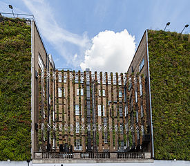 A living wall or vertical garden (Diego Delso/CC BY-SA 3.0)